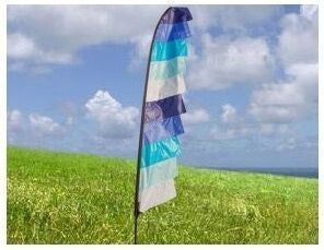 Festival Feather Flags - Cool