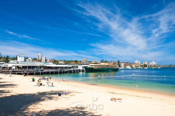 Manly Harbour SYD2909