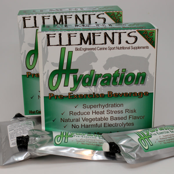 Elements H Pre-exercise Hydration 3.5 oz Sport Pack Pouches