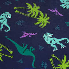 Women's Hipster Dawn of the Dino Underwear