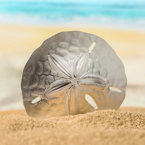 2019 Palau 1 Ounce Sand Dollar Shaped Silk Finish .999 Silver Coin