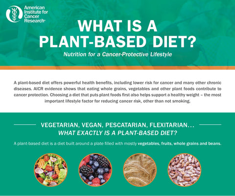 INSTANT DOWNLOAD: What is a Plant-Based Diet?