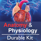 Anatomy & Physiology Durables Kit
