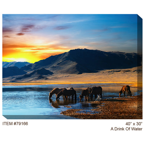 A Drink of Water Outdoor Canvas Art - Outdoor Art Pros