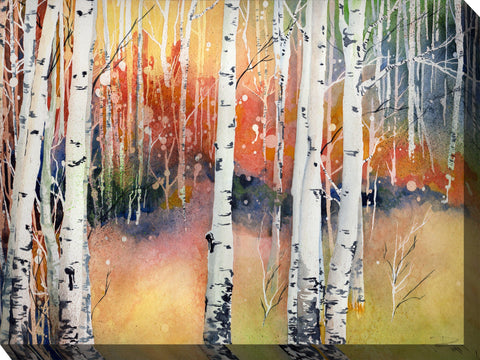 Colorado Aspens Outdoor Canvass Art -  Outdoor Art Pros