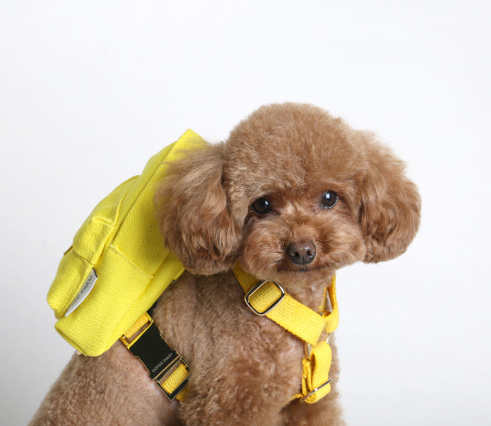 Backpack with harness | Banana