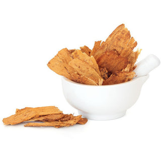 Astragalus Root Botanical Extract
