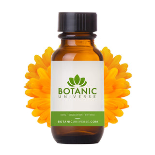 Calendula Carrier Oil