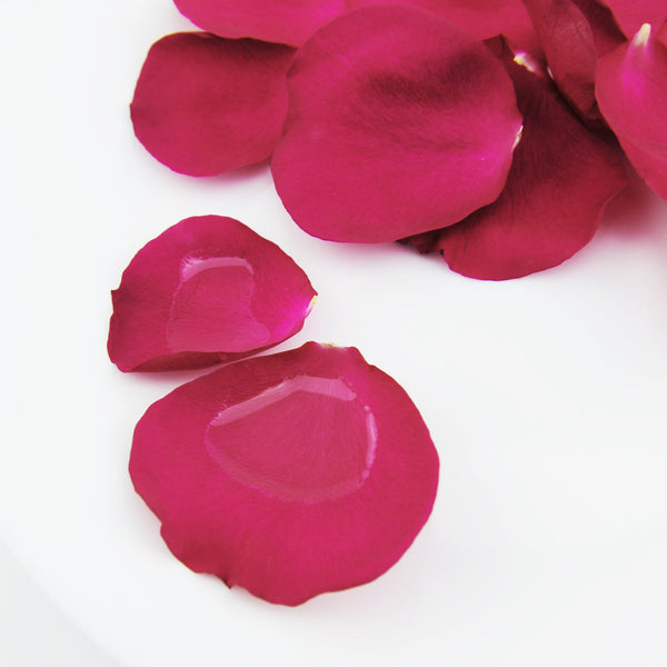 The magic of Moroccan Rose