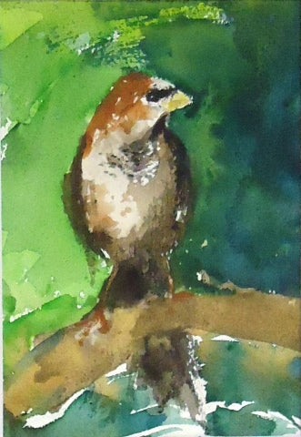 Watercolor painting of sparrow sitting on tree branch by Amanda Moseley
