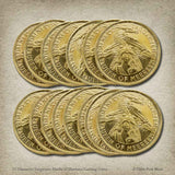 15 Daenerys Targaryen Marks of Meereen Gaming Coins