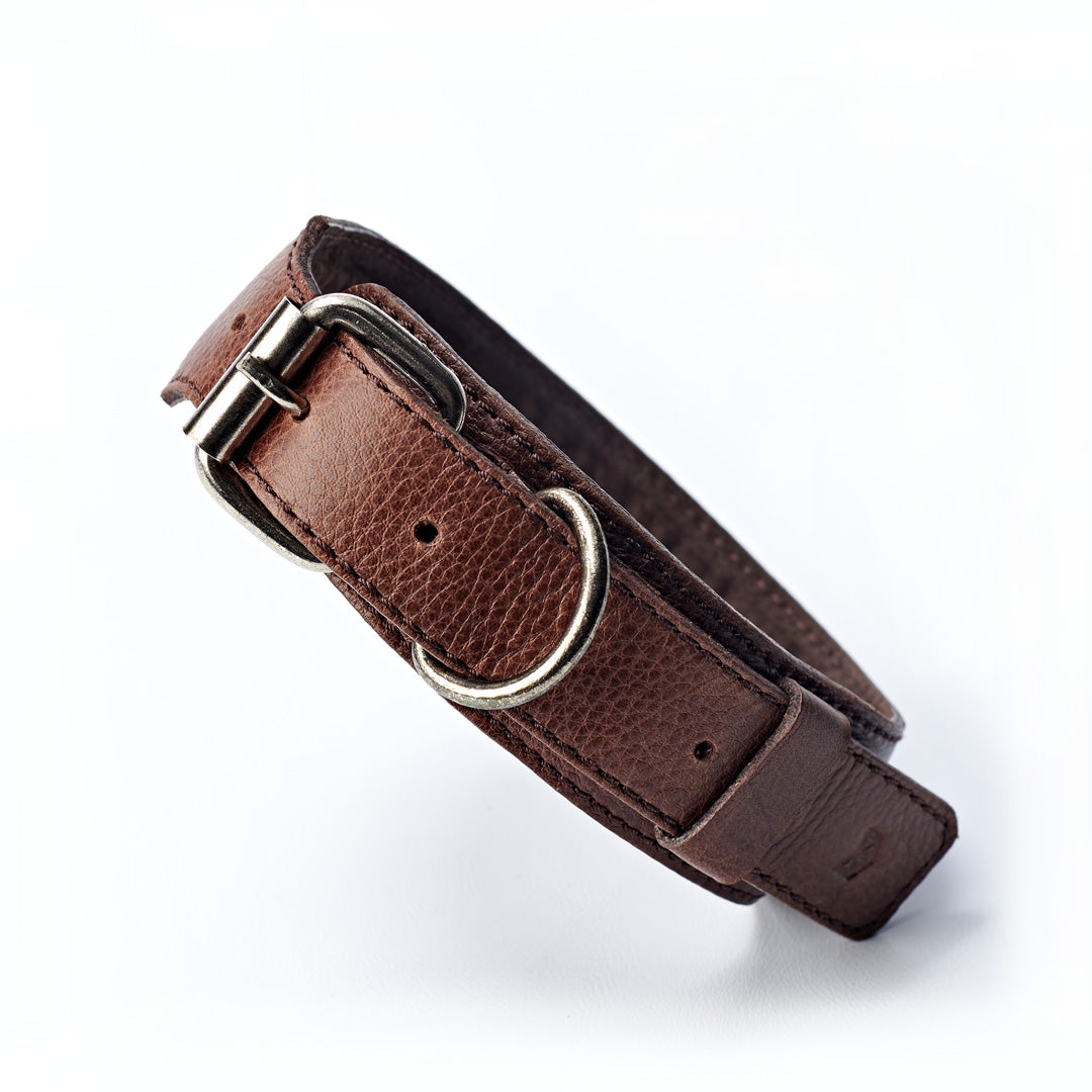 Handmade minimal dark brown leather padded dog collar by Capra Leather.