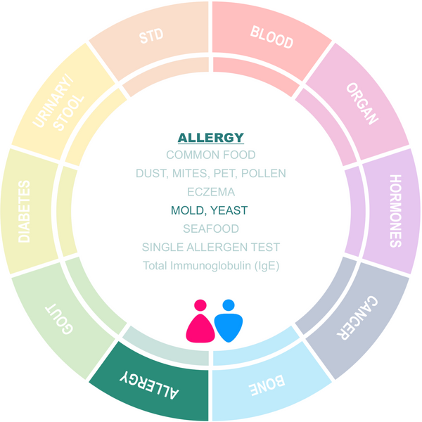 Allergy Screening on Molds and Yeast