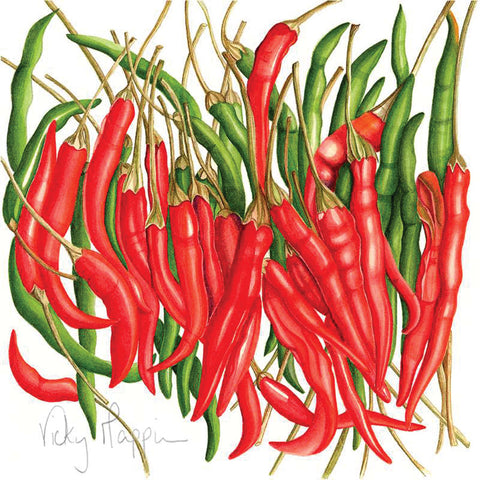 Chillies By Vicky Mappin