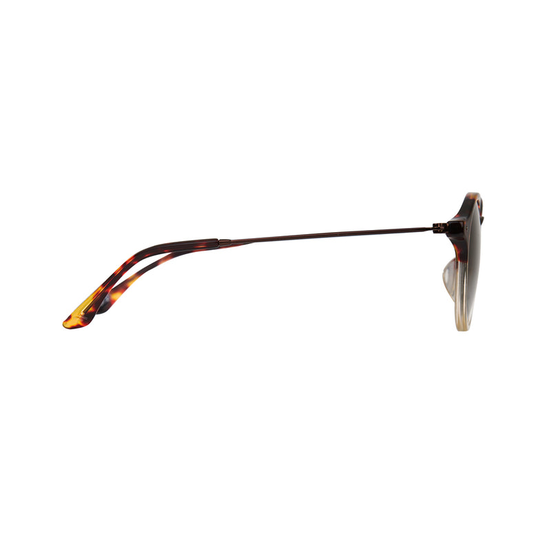 Orbit - Honey (Polarised) - RIXX Eyewear