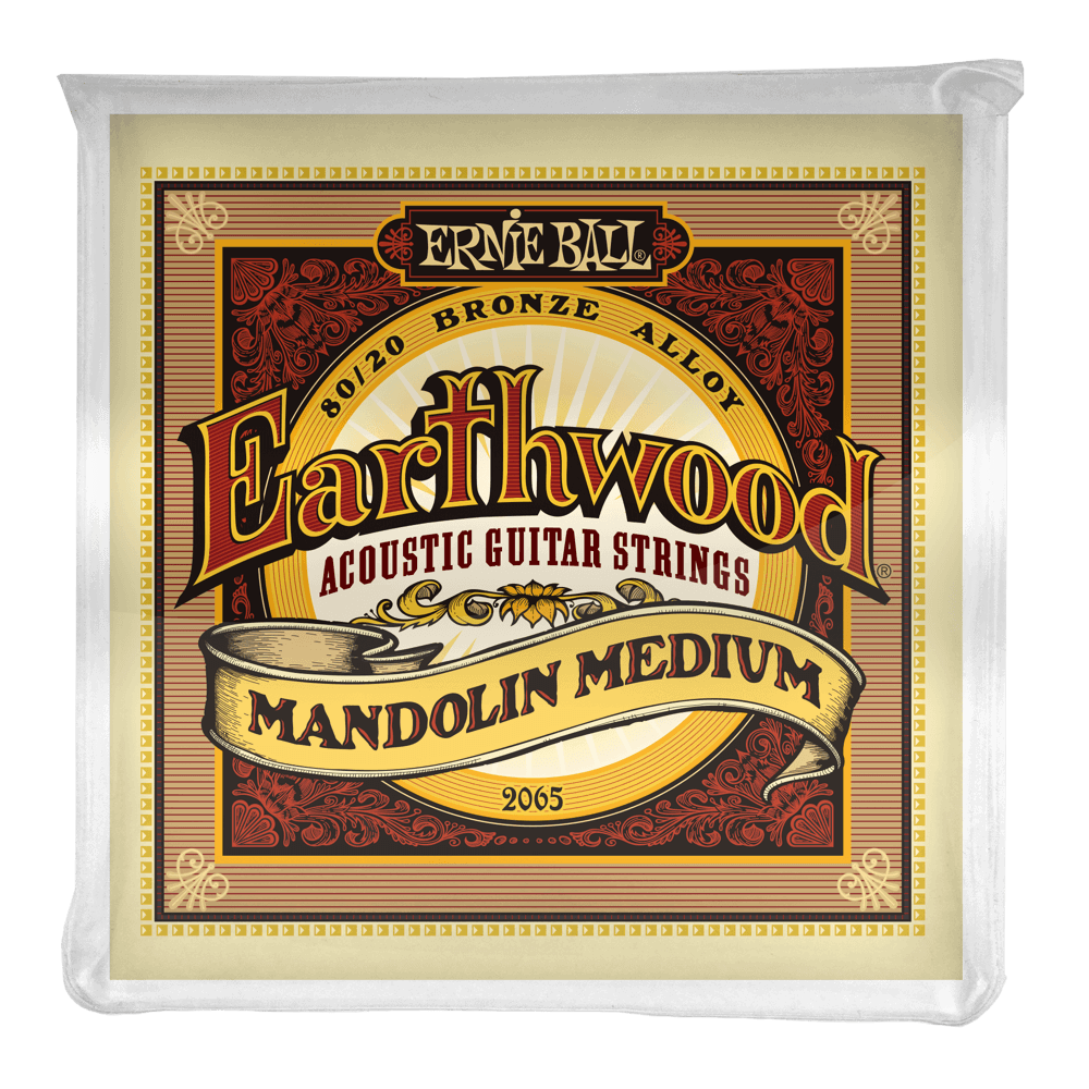 Ernie Ball Earthwood Mandolin Strings - Medium