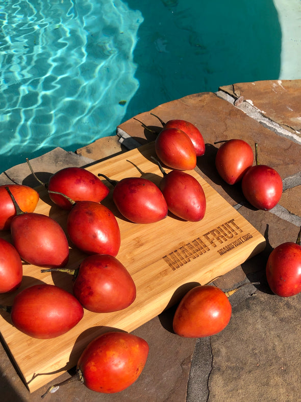 Tamarillo (Tree Tomato)