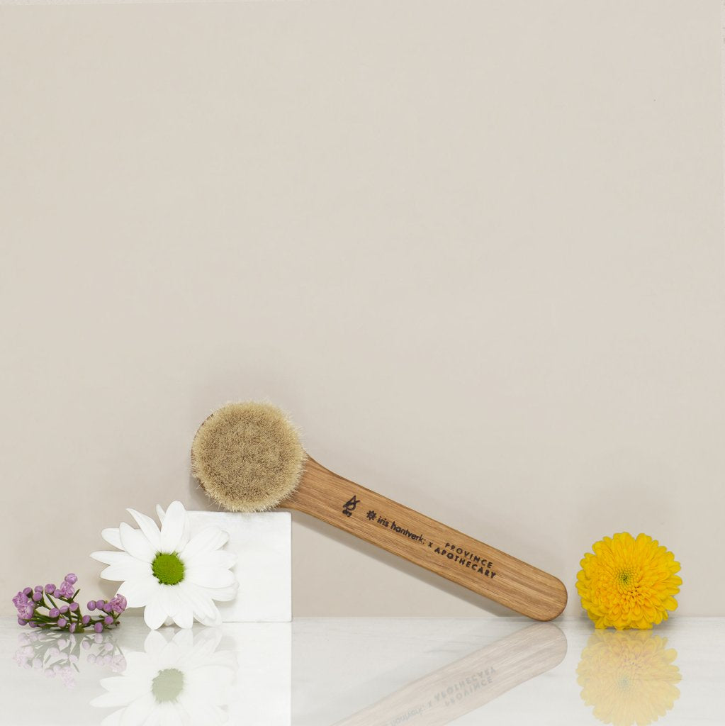 Daily Glow Facial Dry Brush - The Niche Naturals