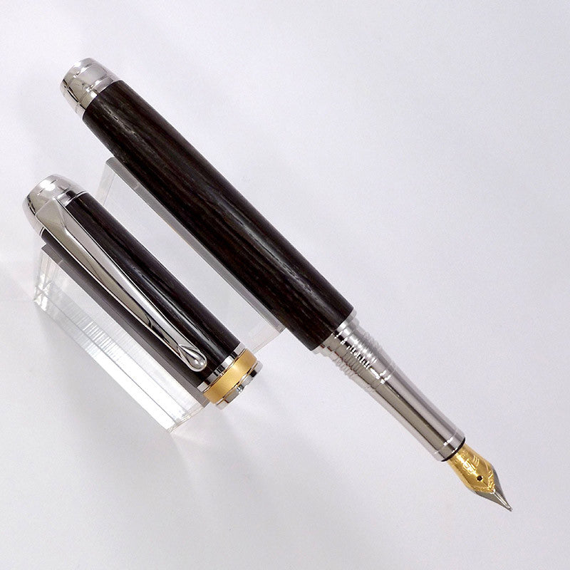 3,300 year old Bog Oak Arundel Fountain Pen