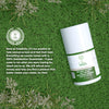 Safflower Oleosomes Daily Natural Moisturizing Sunscreen SPF 30 - TreeActiv