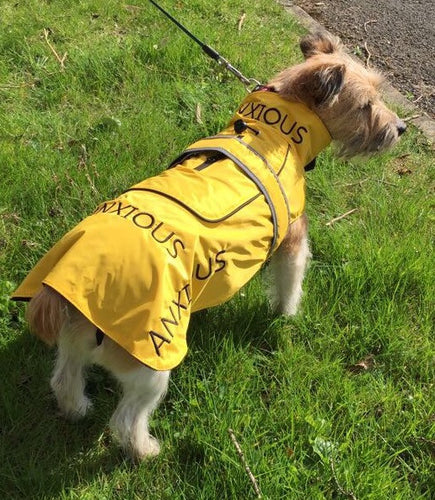 My Anxious dog Raincoat 16
