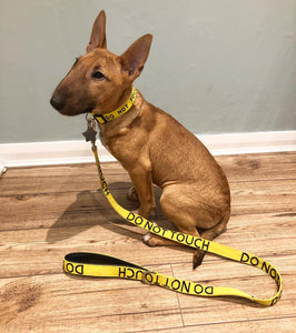 "Adjustable Dog Collar ""DO NOT TOUCH"""