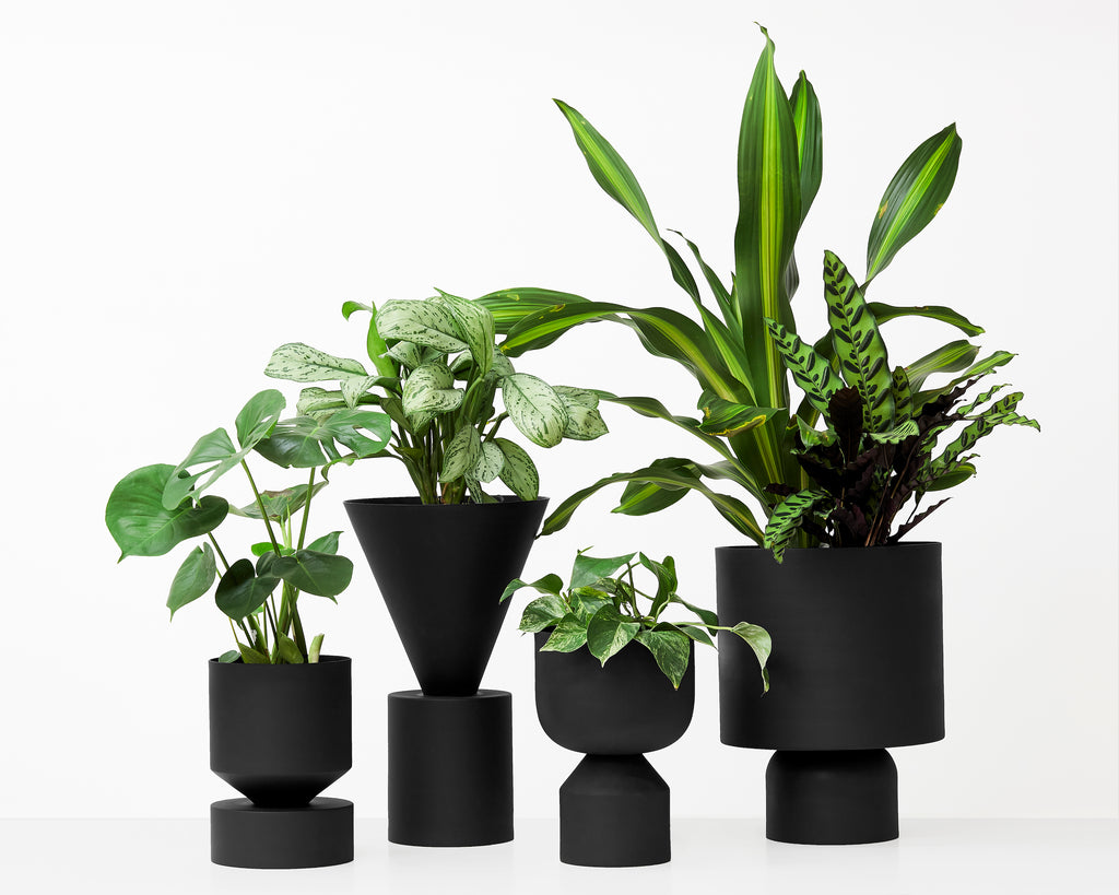 LLOT LLOV - Rec-Cir-Cut Planter