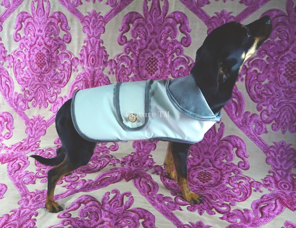GLOTURE Glow-In-The-Dark Dressy GloCoat - Lavish Pets