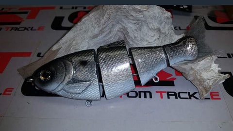 Bull shad swimbaits Gizzard shad