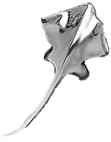 Sting Ray Reversible Non-Pierced Rhodium on Sterling Silver Ear Cuff Earring