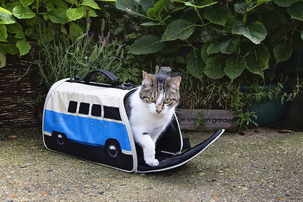 VW Campervan Pet Carrier