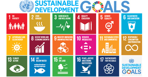The sustainable development goals on the dinki human blog