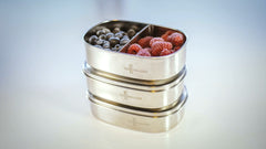 Stainless Steel or Glass Food Containers?