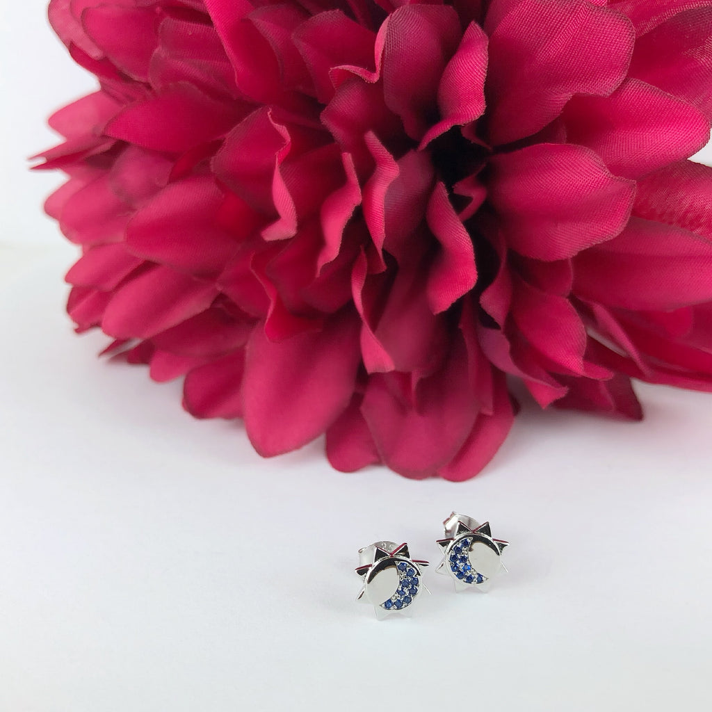 Night Sparkle Earrings - SE4883