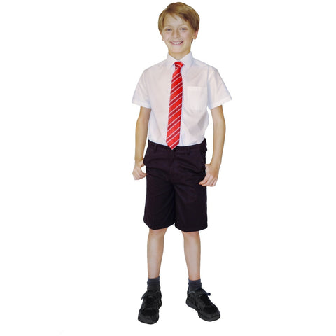 Boys Classic Fit Pure Cotton School Shorts