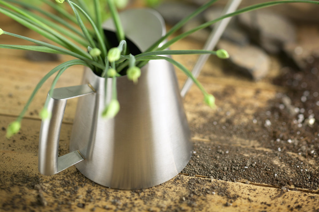 Creative Gardening with StainlessLUX 72253 Watering Can