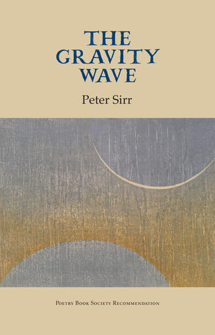 The Gravity Wave by Peter Sirr <br><b>PBS Autumn Recommendation 2019</b>