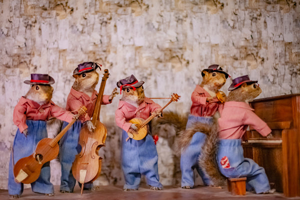 Singing Squirrel Band