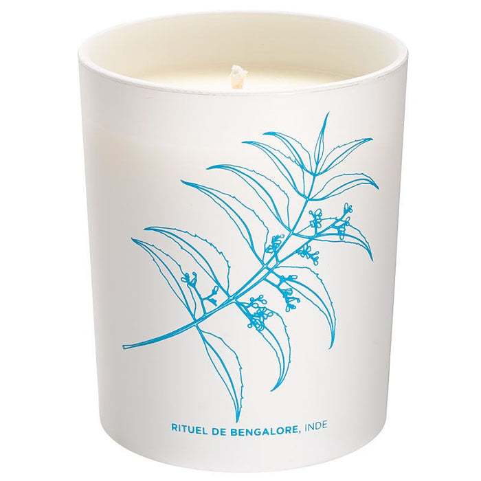 Cinq Mondes Phyto-Aromatic Candle - Bengalore's ritual, India (6.3 oz)