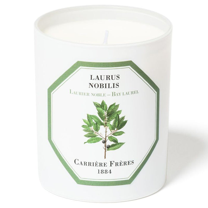 Carriere Freres Bay Laurel Candle