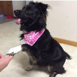 Personalised pet bandana