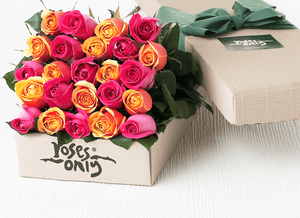 24 Bright Mixed Roses Gift Box