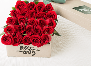 24 Red Roses in our Signature Box