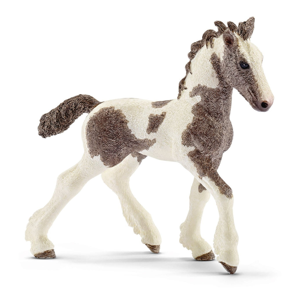 Schleich - 13774 | Farm World: Tinker Foal