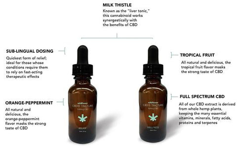 Wildflower CBD+ RELIEF Tincture - 1000mg CBD