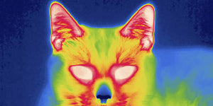 THERMAL IMAGING OPTICS