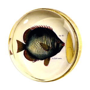 Brass hook with glass inlay fish artwork Charleston Knob Company