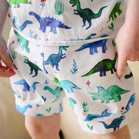 Blue & Green Dinosaur Shorts & Bummies