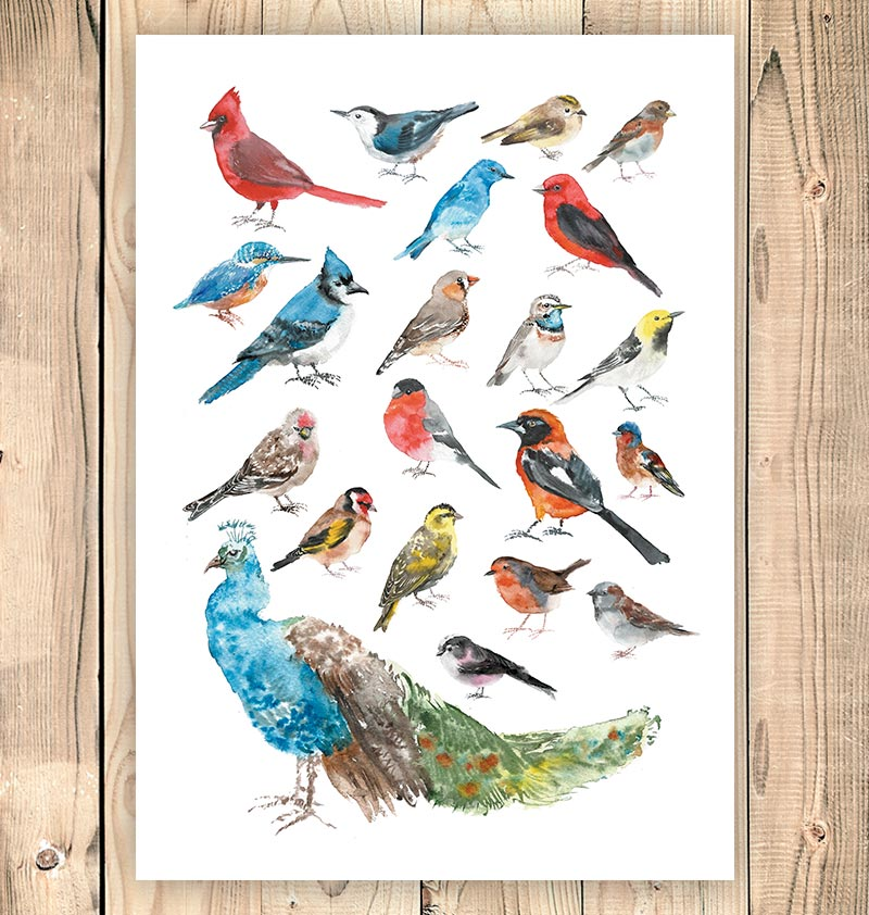 Bird collage - Watercolor art print