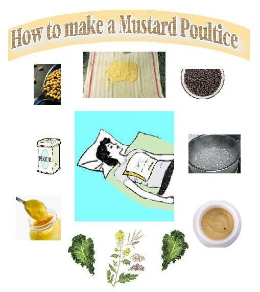 MUSTARD POULTICE OR PLASTER - The true home remedy for the flu, colds and many other ailments